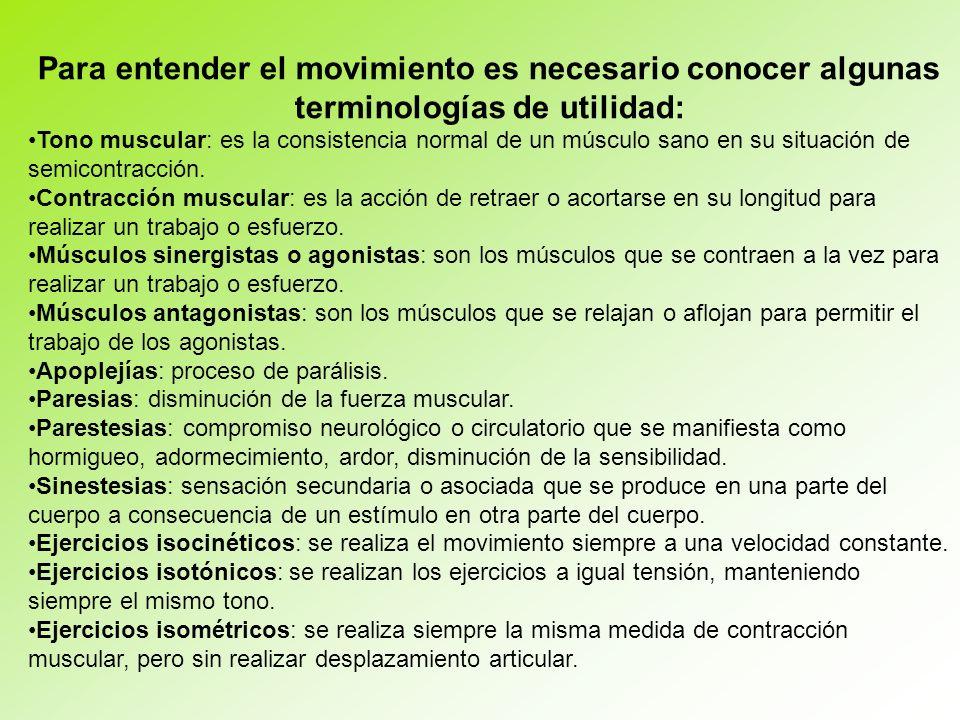 Para entender el movimiento es necesario conocer algunas terminologías de utilidad: Tono muscular: es la consistencia normal de un músculo sano en su