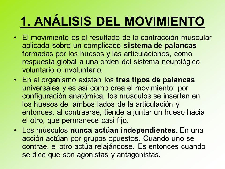 1. ANÁLISIS DEL MOVIMIENTO El movimiento es el resultado de la contracción muscular aplicada sobre un complicado sistema de palancas formadas por los