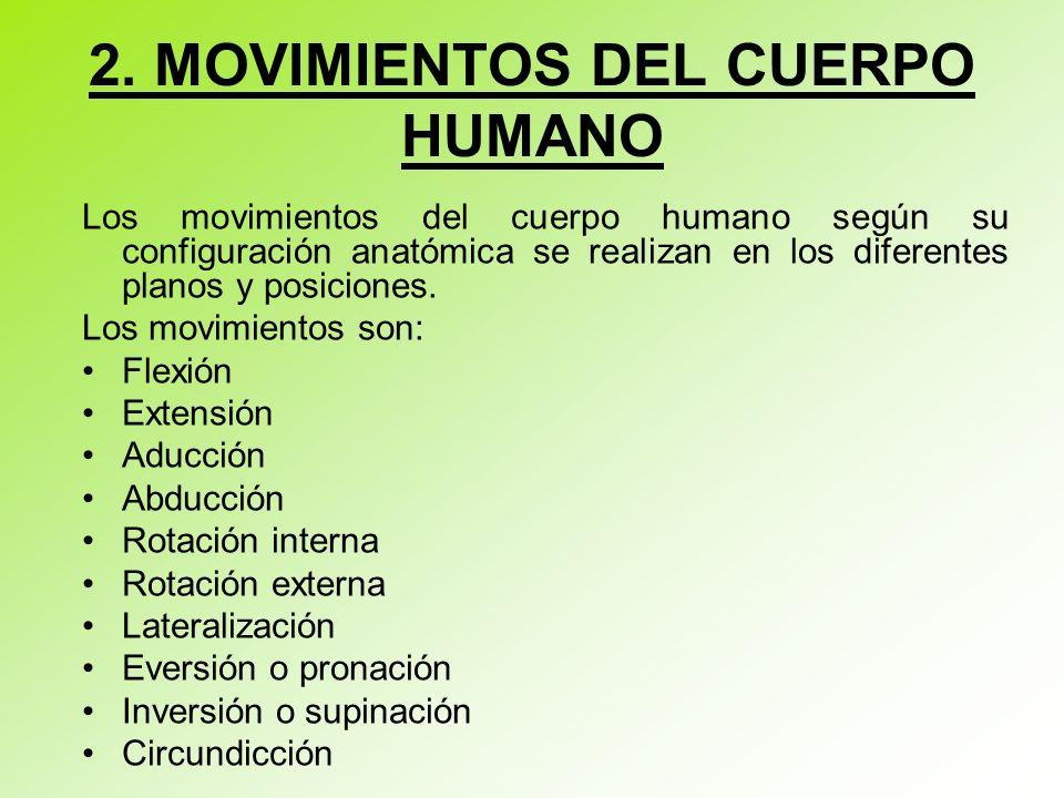 2. MOVIMIENTOS DEL CUERPO HUMANO Los movimientos del cuerpo humano según su configuración anatómica se realizan en los diferentes planos y posiciones.