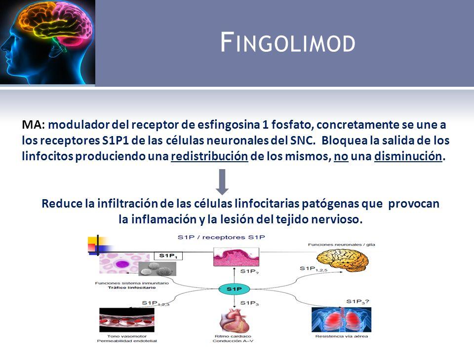 F INGOLIMOD MA: modulador del receptor de esfingosina 1 fosfato, concretamente se une a los receptores S1P1 de las células neuronales del SNC.