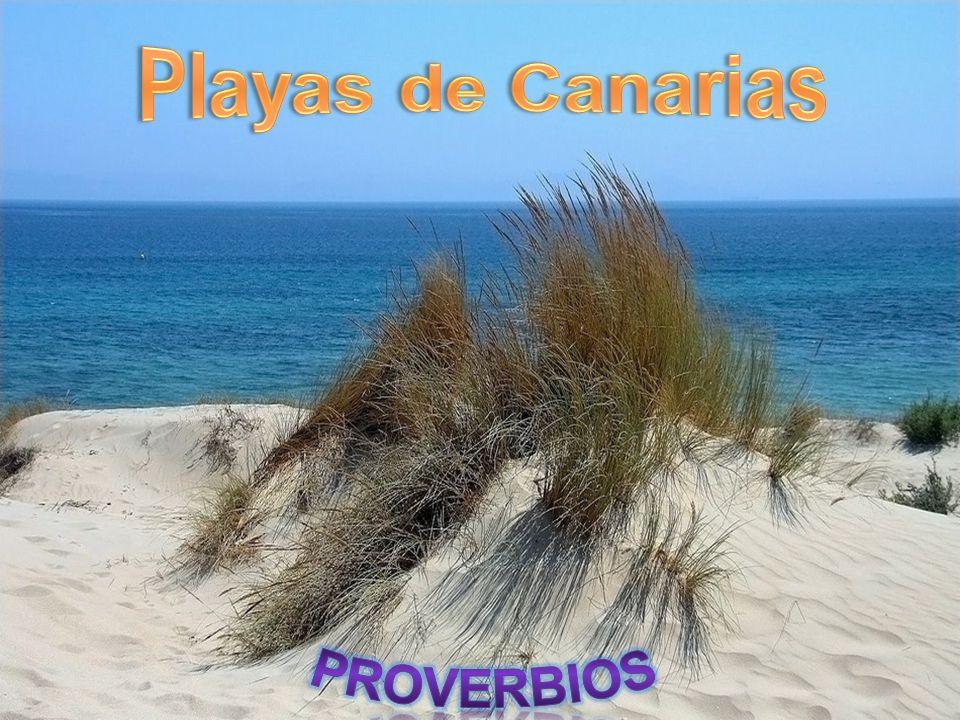 Playa Blanca La paciencia es un árbol de raiz amarga pero de frutos muy dulces