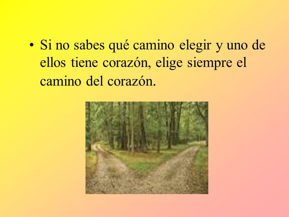 Si no sabes qué camino elegir y uno de ellos tiene corazón, elige siempre el camino del corazón.