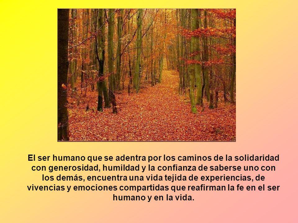 El ser humano que se adentra por los caminos de la solidaridad con generosidad, humildad y la confianza de saberse uno con los demás, encuentra una vi