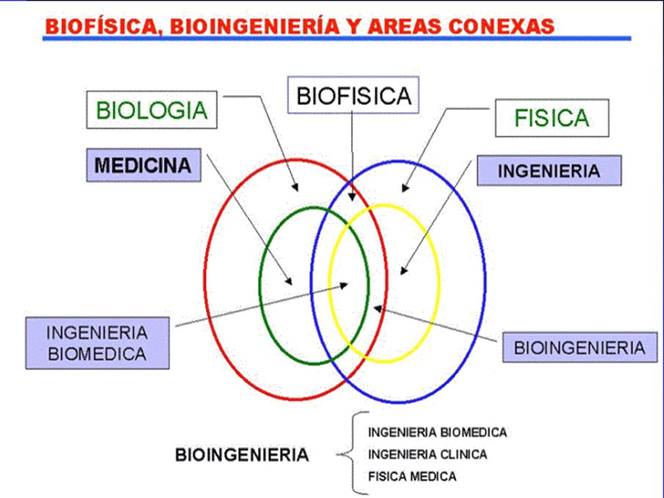 ¿ Software ?: Bioinformática