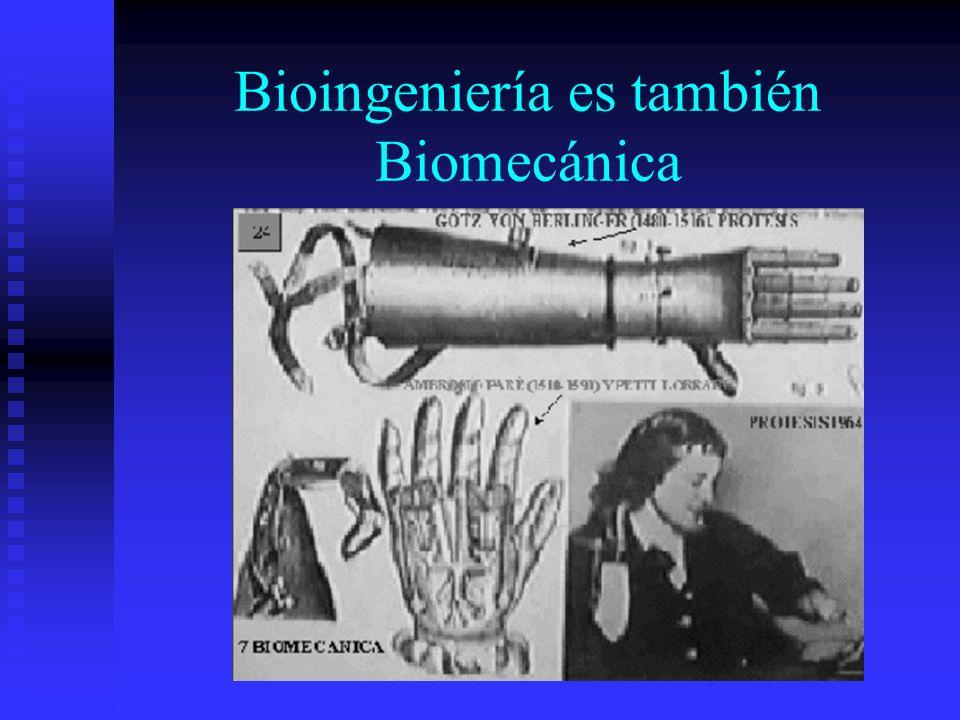 Bioingeniería es también Biomecánica