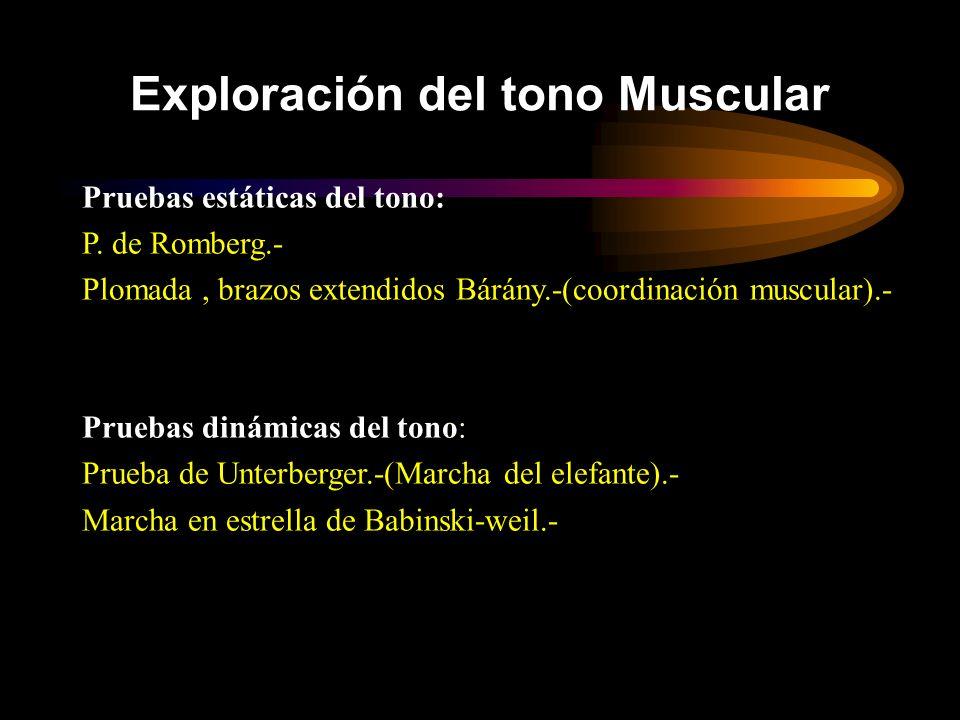 Pruebas estáticas del tono: P. de Romberg.- Plomada, brazos extendidos Bárány.-(coordinación muscular).- Pruebas dinámicas del tono: Prueba de Unterbe