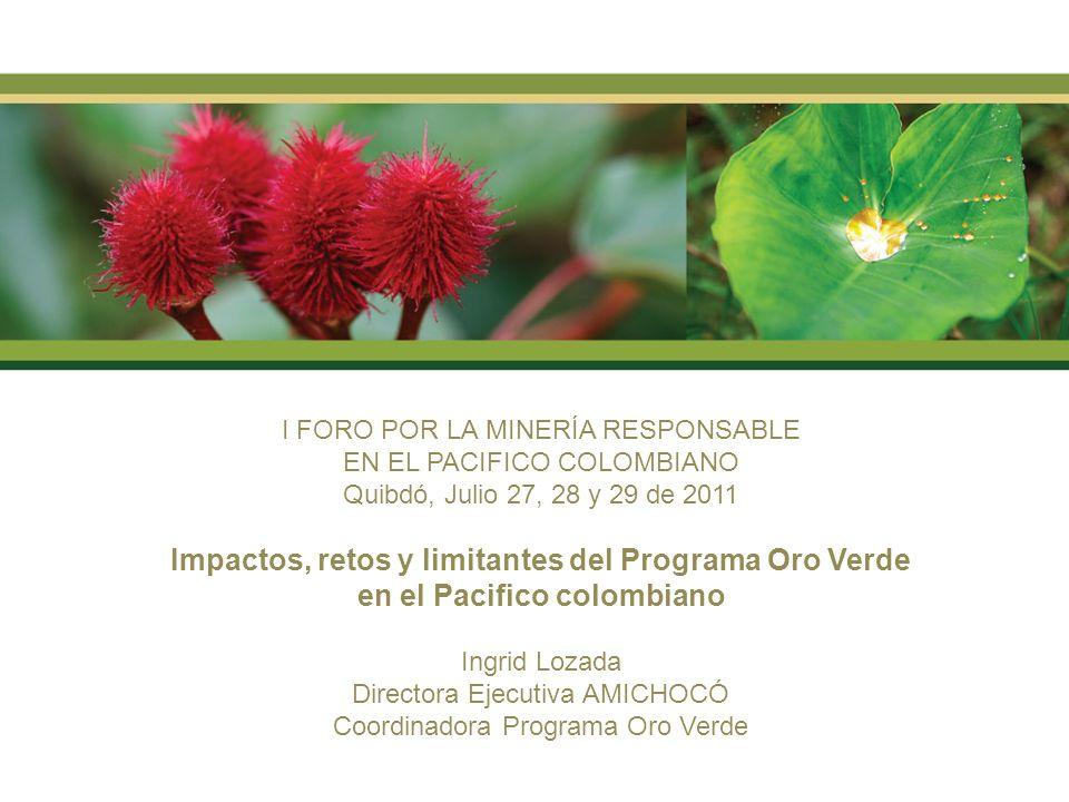 I FORO POR LA MINERÍA RESPONSABLE EN EL PACIFICO COLOMBIANO Quibdó, Julio 27, 28 y 29 de 2011 Impactos, retos y limitantes del Programa Oro Verde en el Pacifico colombiano Ingrid Lozada Directora Ejecutiva AMICHOCÓ Coordinadora Programa Oro Verde