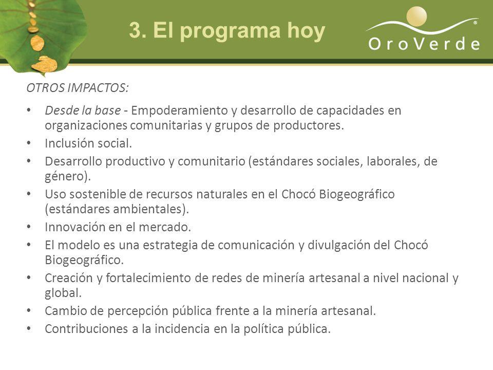 OTROS IMPACTOS: Desde la base - Empoderamiento y desarrollo de capacidades en organizaciones comunitarias y grupos de productores.