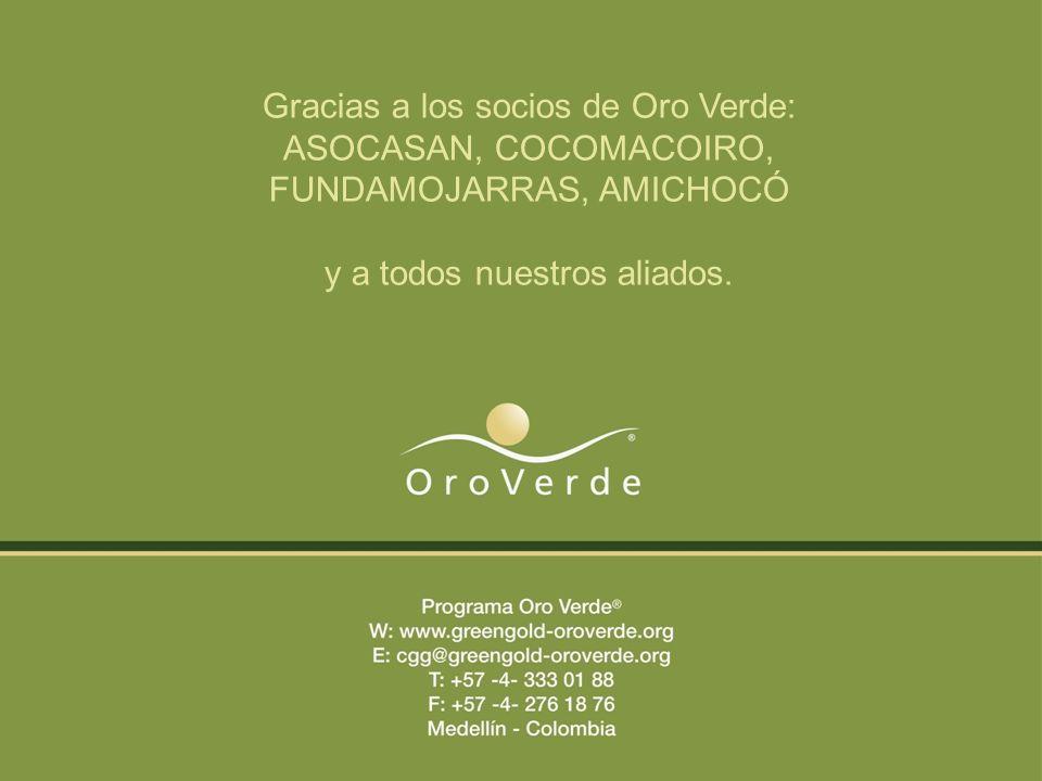 Gracias a los socios de Oro Verde: ASOCASAN, COCOMACOIRO, FUNDAMOJARRAS, AMICHOCÓ y a todos nuestros aliados.