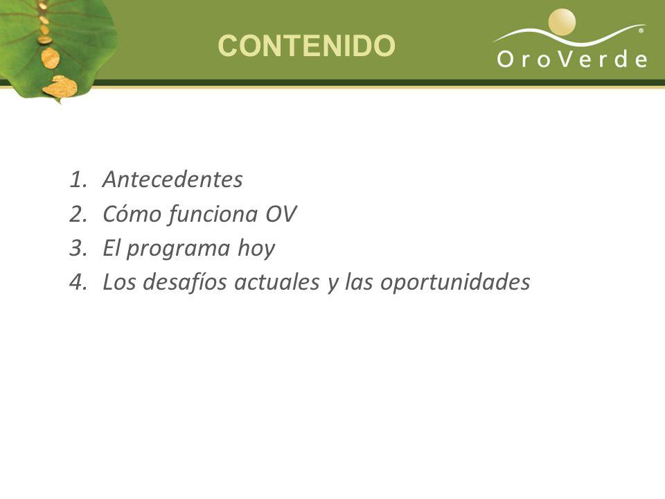 1.Antecedentes 2.Cómo funciona OV 3.El programa hoy 4.Los desafíos actuales y las oportunidades CONTENIDO