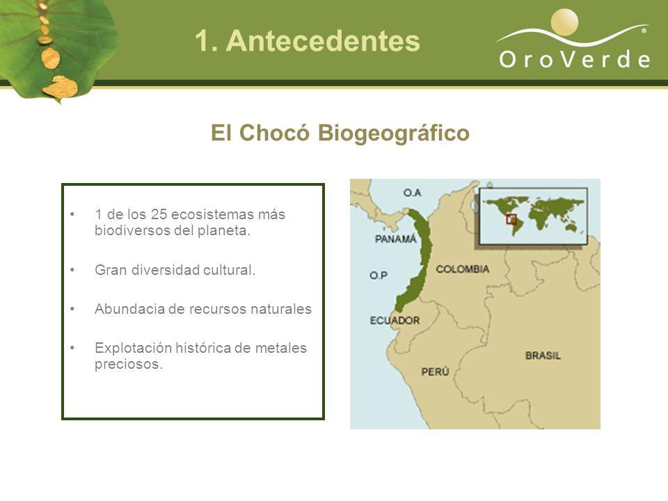 El Chocó Biogeográfico 1 de los 25 ecosistemas más biodiversos del planeta.