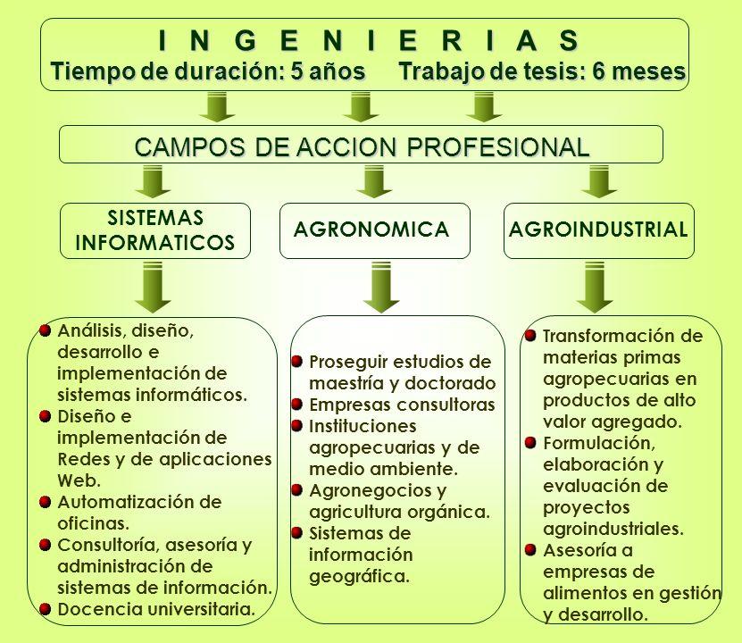I N G E N I E R I A S Tiempo de duración: 5 años Trabajo de tesis: 6 meses AGRONOMICA SISTEMAS INFORMATICOS AGROINDUSTRIAL Proseguir estudios de maestría y doctorado Empresas consultoras Instituciones agropecuarias y de medio ambiente.