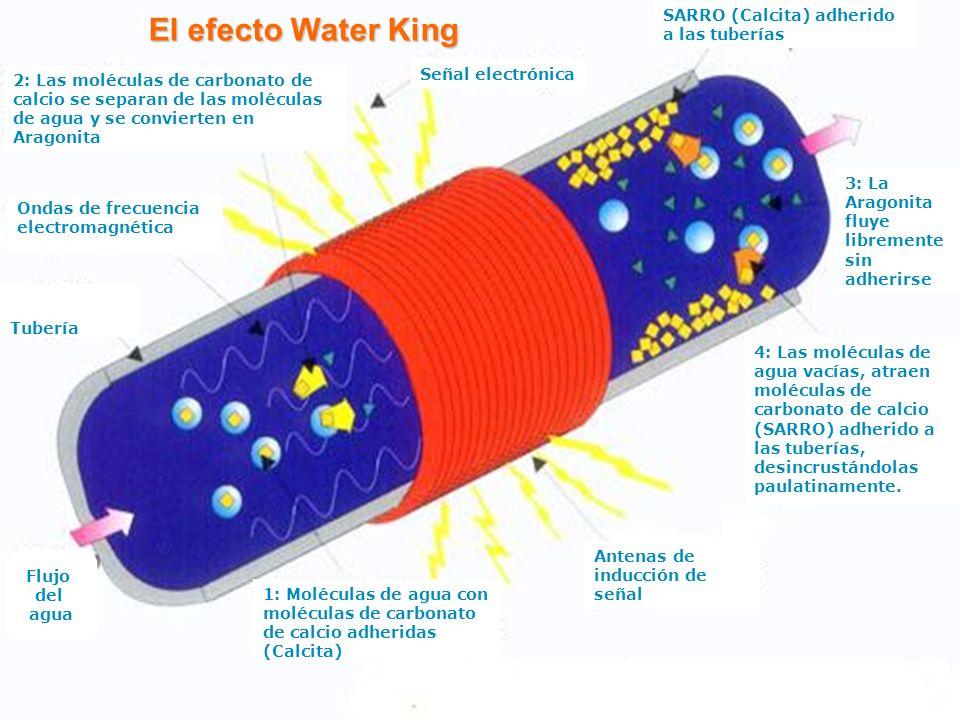 Beneficios de Water King No se vuelve a formar sarro en ninguna de las tuberías, válvulas, llaves, aspersores, tanques de agua e instalaciones hidráulicas protegidas.