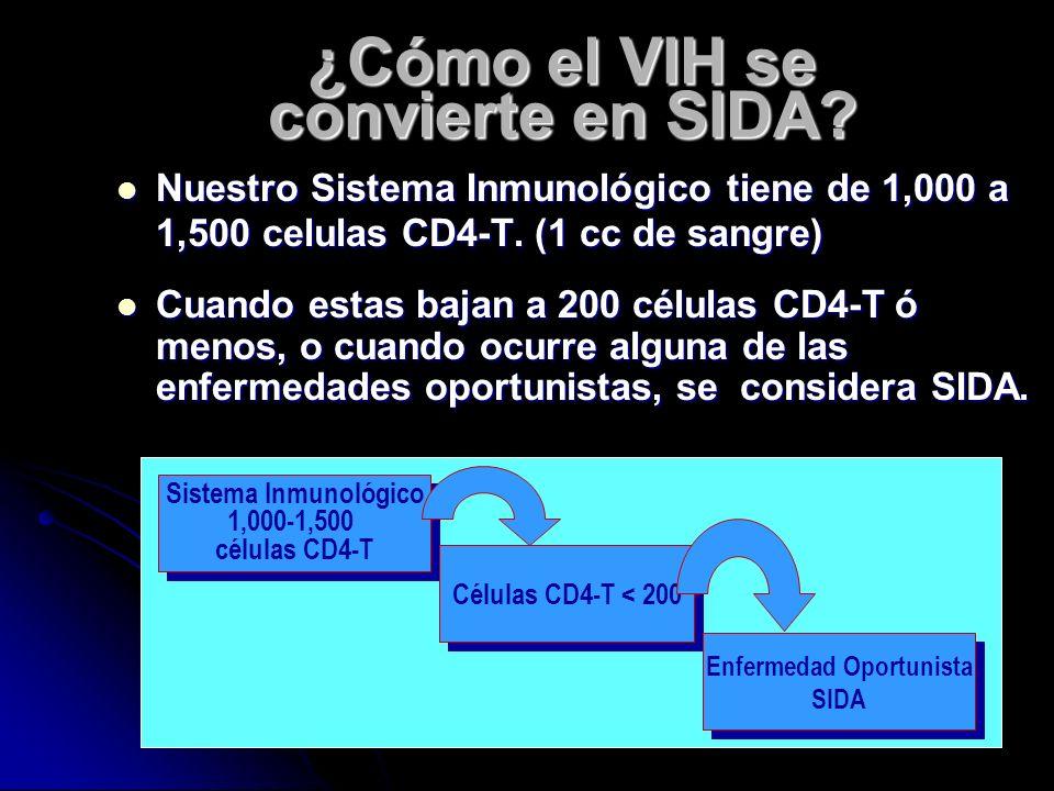 ¿Qué es el SIDA? El SIDA es el Síndrome de El SIDA es el Síndrome de Inmunodeficiencia Adquirida. *Enfermedades Oportunista Es el síndrome que describ