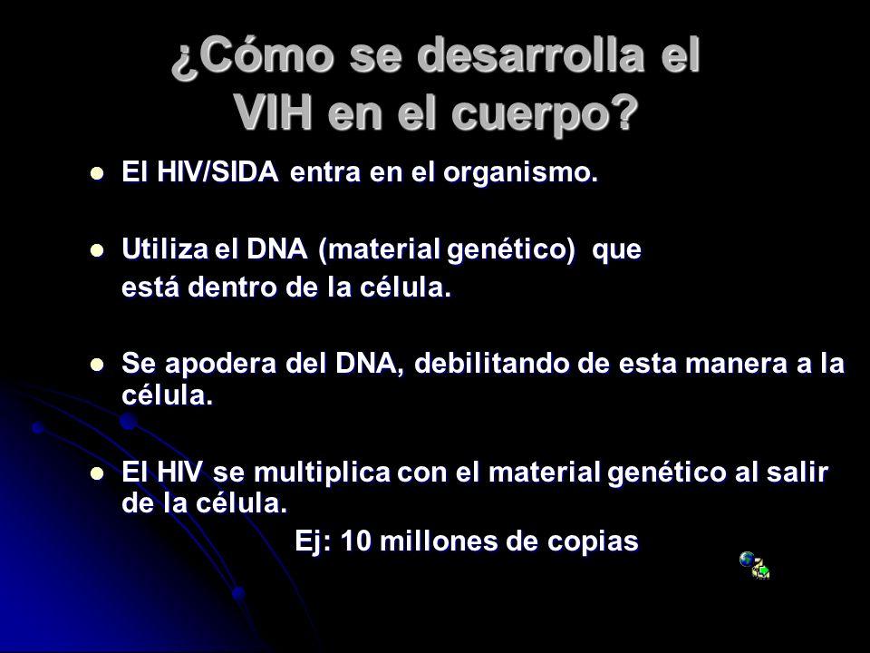¿Cómo el VIH se convierte en SIDA? Nuestro Sistema Inmunológico tiene de 1,000 a 1,500 celulas CD4-T. (1 cc de sangre) Nuestro Sistema Inmunológico ti