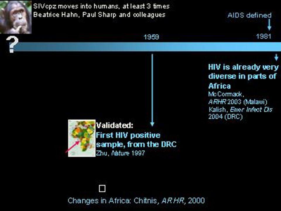 ¿Cómo se desarrolla el VIH en el cuerpo.El HIV/SIDA entra en el organismo.