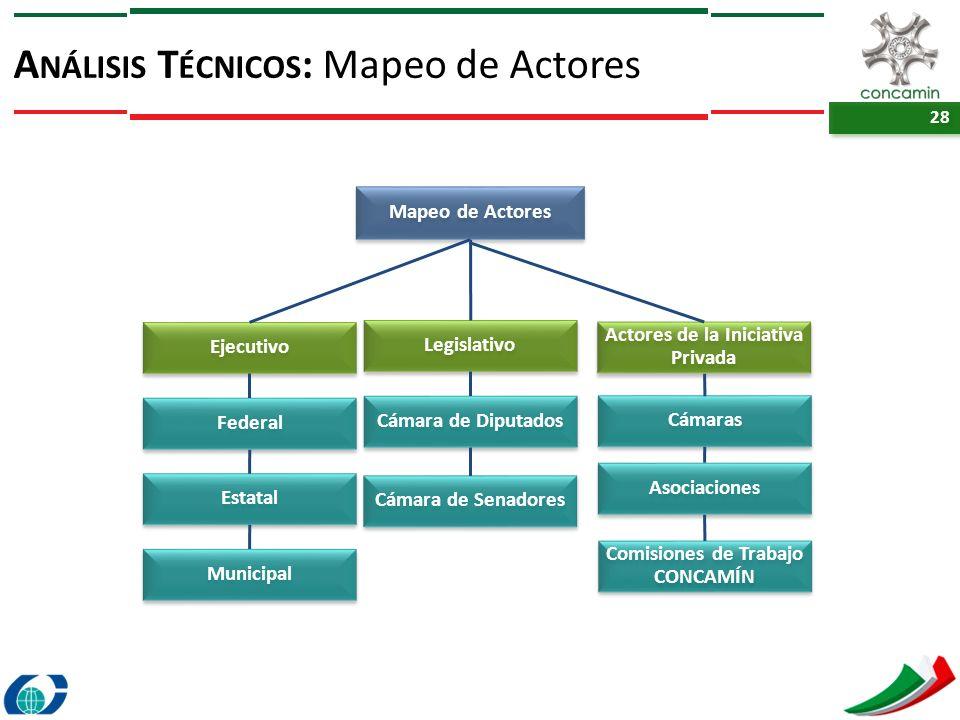 28 A NÁLISIS T ÉCNICOS : Mapeo de Actores Mapeo de Actores Ejecutivo Actores de la Iniciativa Privada Federal Estatal Asociaciones Comisiones de Traba