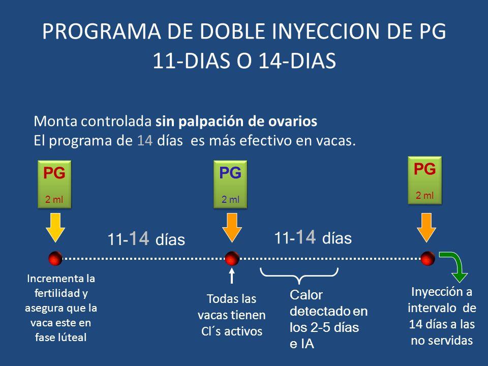PROGRAMA DE DOBLE INYECCION DE PG 11-DIAS O 14-DIAS Todas las vacas tienen Cl´s activos PG 2 ml PG 2 ml 11- 14 días Monta controlada sin palpación de