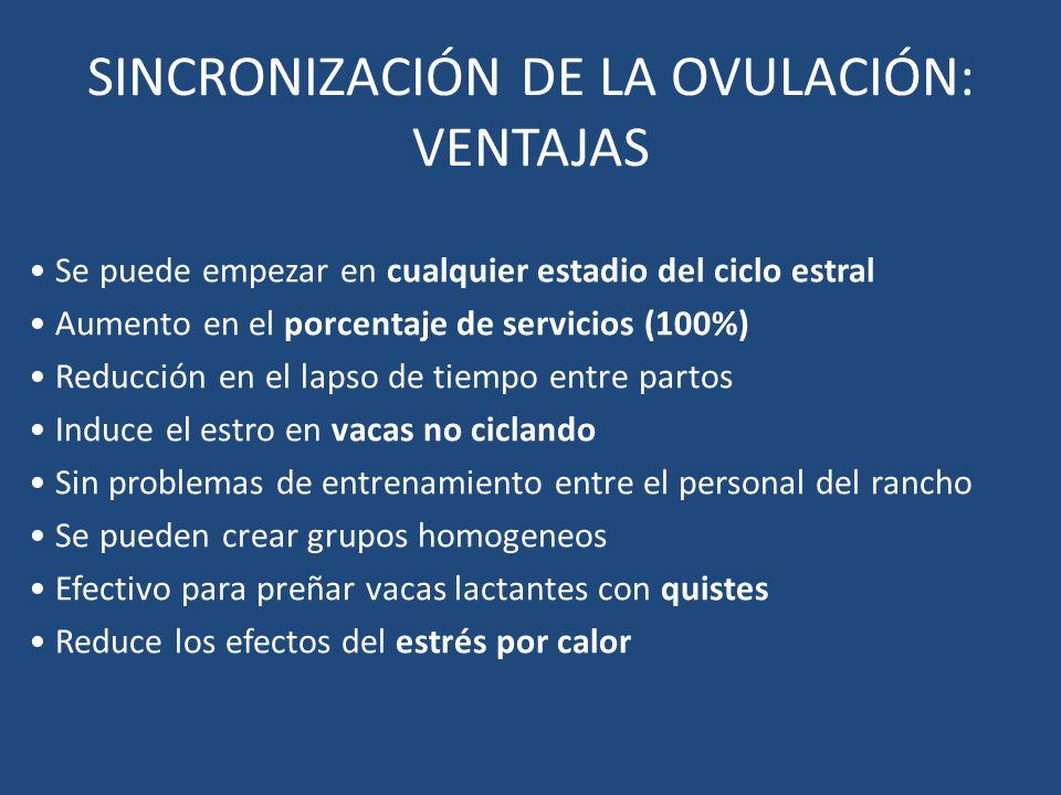 SINCRONIZACIÓN DE LA OVULACIÓN: VENTAJAS Se puede empezar en cualquier estadio del ciclo estral Aumento en el porcentaje de servicios (100%) Reducción