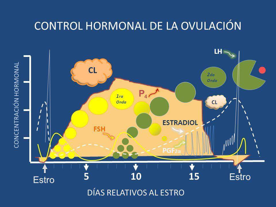 1510 CONCENTRACIÓN HORMONAL 5 Estro CONTROL HORMONAL DE LA OVULACIÓN 1 ra Onda 2 da Onda CL P4P4 DÍAS RELATIVOS AL ESTRO Estro LH PGF 2α ESTRADIOL FSH