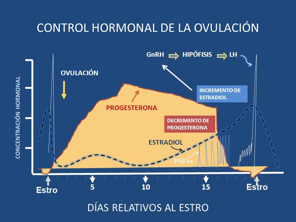 1510 CONCENTRACIÓN HORMONAL 5 Estro CONTROL HORMONAL DE LA OVULACIÓN DÍAS RELATIVOS AL ESTRO Estro GnRH HIPÓFISIS LH PGF 2α ESTRADIOL PROGESTERONA OVU