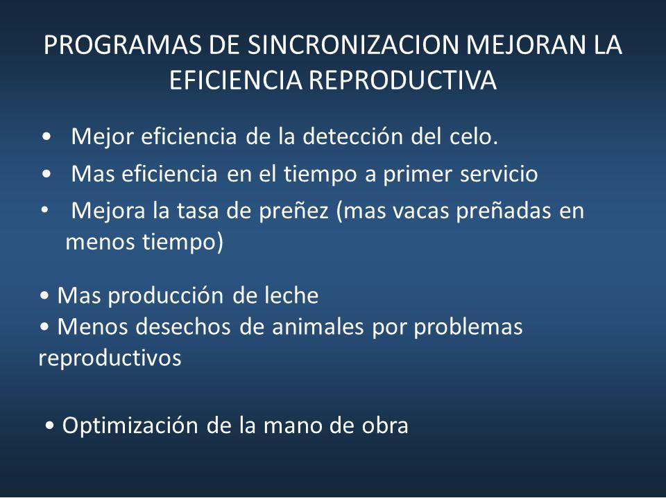 PROGRAMAS DE SINCRONIZACION MEJORAN LA EFICIENCIA REPRODUCTIVA Mejor eficiencia de la detección del celo. Mas eficiencia en el tiempo a primer servici