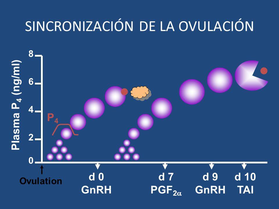 d 9 GnRH d 7 PGF 2 d 10 TAI 2 4 6 8 0 Plasma P 4 (ng/ml) P4P4 d 0 GnRH Ovulation SINCRONIZACIÓN DE LA OVULACIÓN