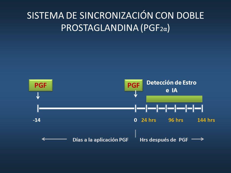 SISTEMA DE SINCRONIZACIÓN CON DOBLE PROSTAGLANDINA (PGF 2α ) PGF Detección de Estro e IA -140144 hrs Días a la aplicación PGF Hrs después de PGF 24 hr