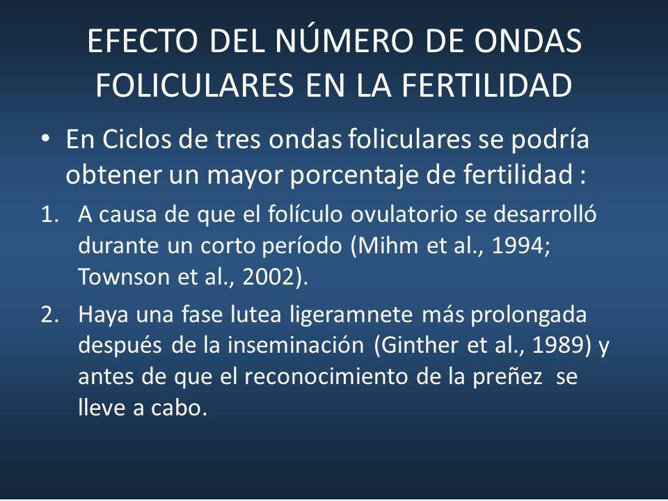 EFECTO DEL NÚMERO DE ONDAS FOLICULARES EN LA FERTILIDAD En Ciclos de tres ondas foliculares se podría obtener un mayor porcentaje de fertilidad : 1.A