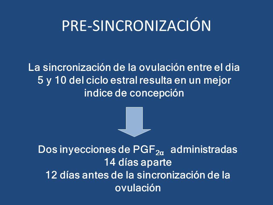 La sincronización de la ovulación entre el dia 5 y 10 del ciclo estral resulta en un mejor indice de concepción Dos inyecciones de PGF 2α administrada