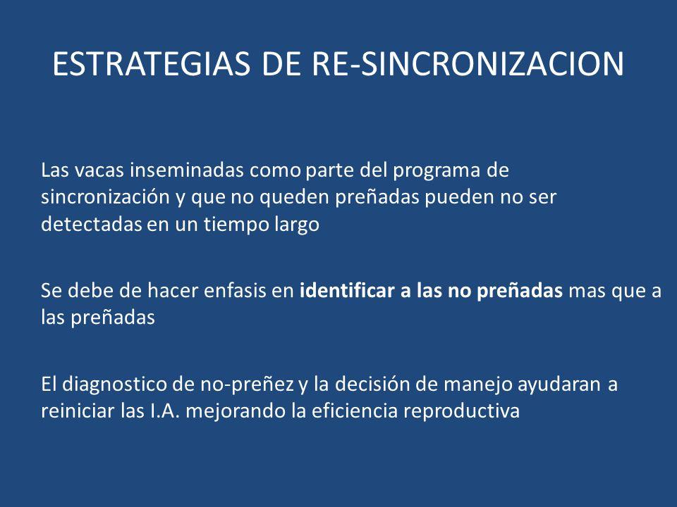 ESTRATEGIAS DE RE-SINCRONIZACION Se debe de hacer enfasis en identificar a las no preñadas mas que a las preñadas Las vacas inseminadas como parte del