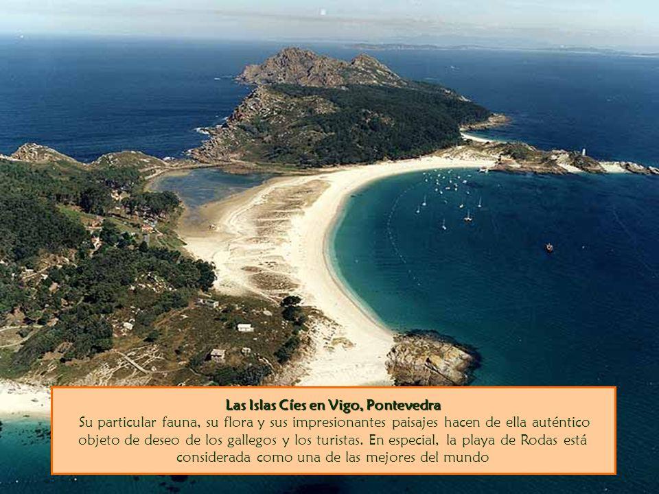 Las Islas Cíes en Vigo, Pontevedra Las Islas Cíes en Vigo, Pontevedra Su particular fauna, su flora y sus impresionantes paisajes hacen de ella auténtico objeto de deseo de los gallegos y los turistas.
