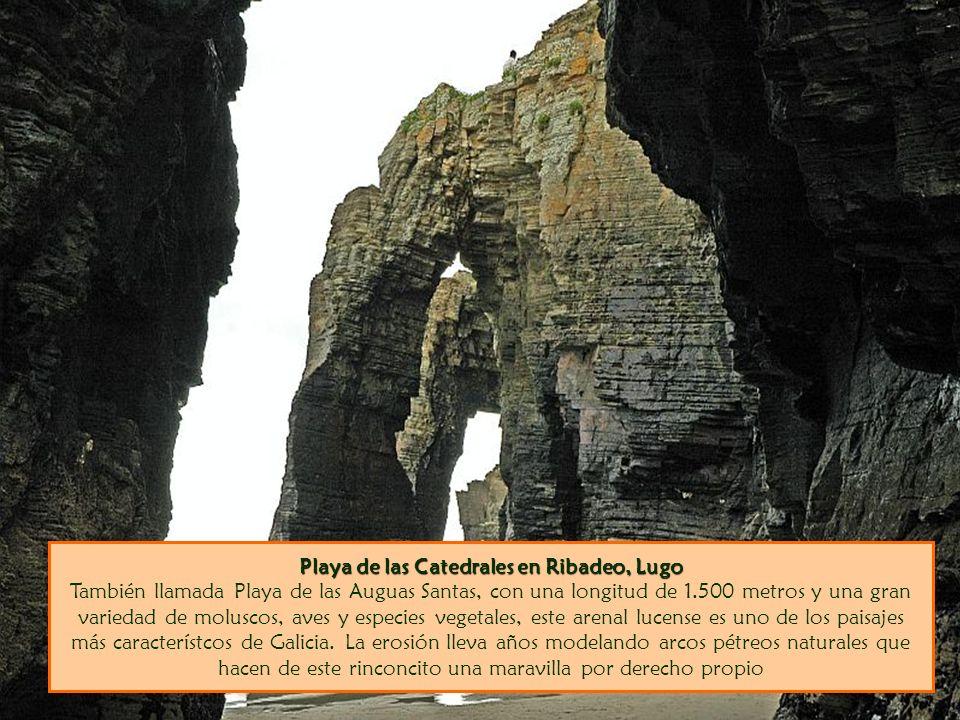 Playa de las Catedrales en Ribadeo, Lugo Playa de las Catedrales en Ribadeo, Lugo También llamada Playa de las Auguas Santas, con una longitud de 1.500 metros y una gran variedad de moluscos, aves y especies vegetales, este arenal lucense es uno de los paisajes más característcos de Galicia.