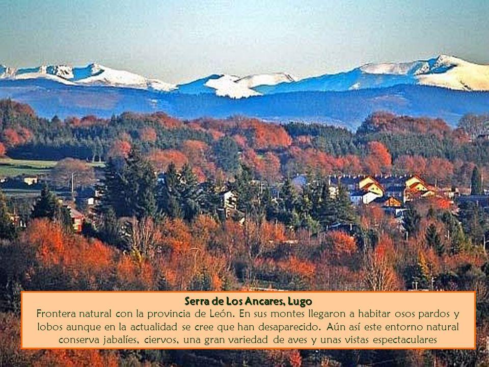 Serra de Los Ancares, Lugo Serra de Los Ancares, Lugo Frontera natural con la provincia de León. En sus montes llegaron a habitar osos pardos y lobos