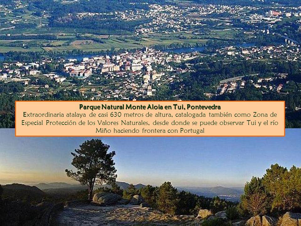 Parque Natural Monte Aloia en Tui, Pontevedra Parque Natural Monte Aloia en Tui, Pontevedra Extraordinaria atalaya de casi 630 metros de altura, catal