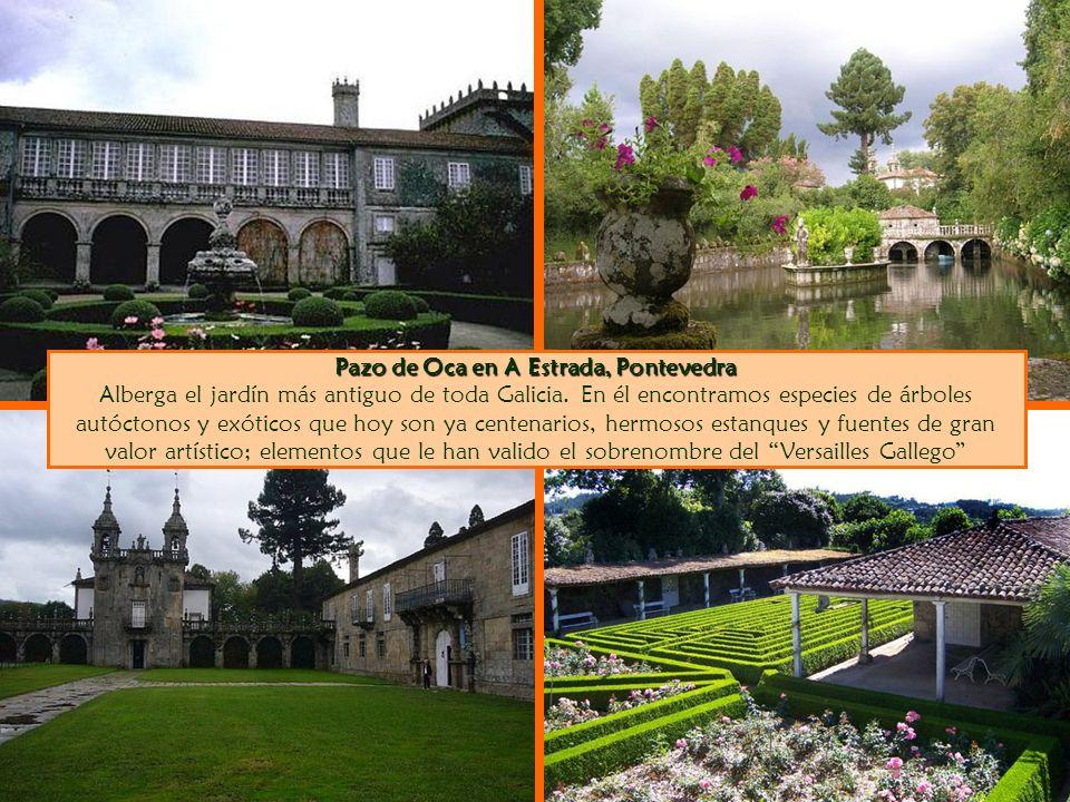 Pazo de Oca en A Estrada, Pontevedra Pazo de Oca en A Estrada, Pontevedra Alberga el jardín más antiguo de toda Galicia. En él encontramos especies de