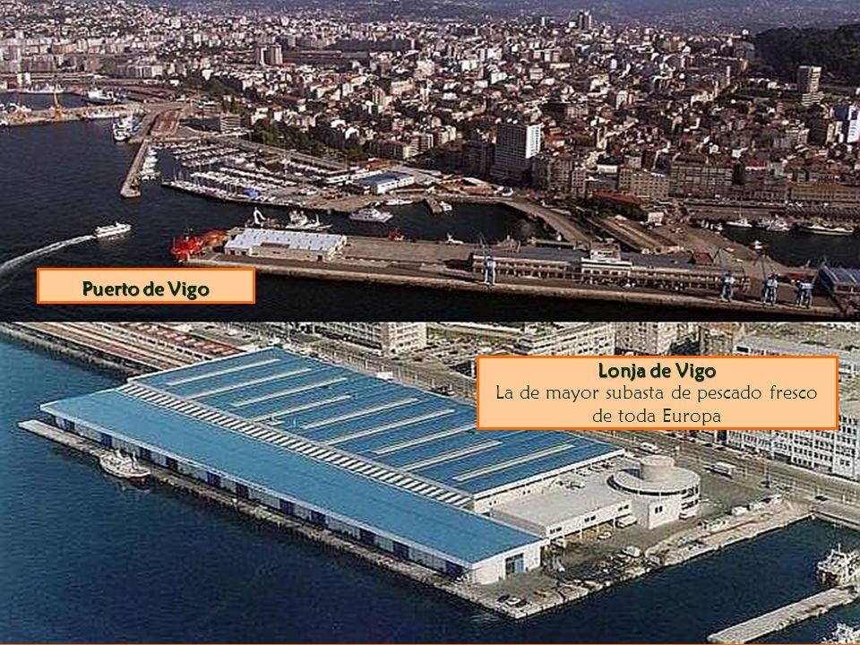 Lonja de Vigo Lonja de Vigo La de mayor subasta de pescado fresco de toda Europa Puerto de Vigo