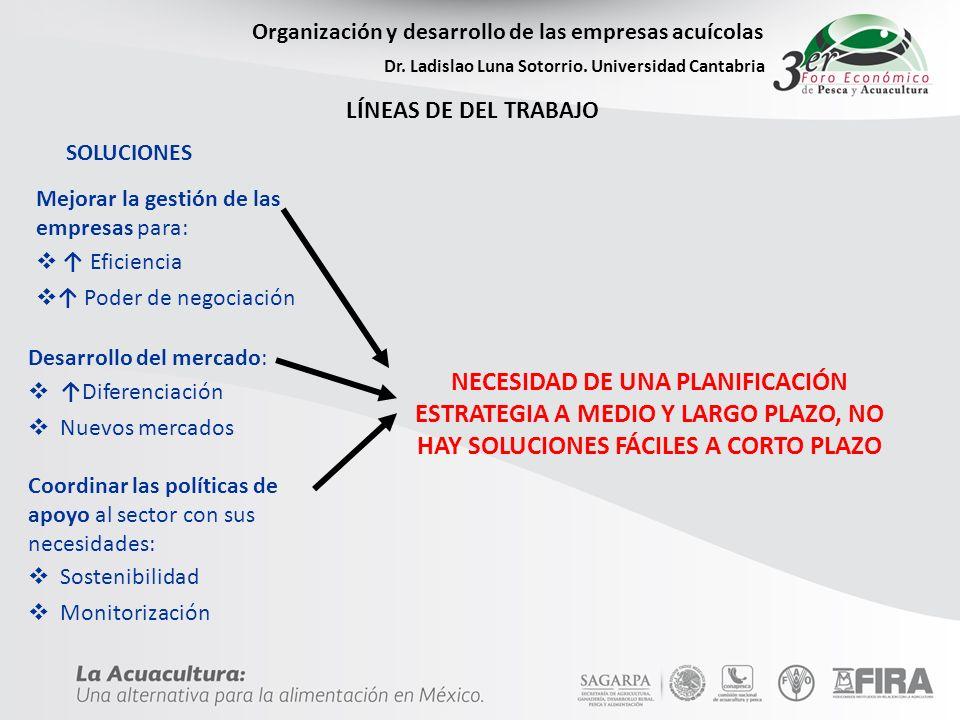 Organización y desarrollo de las empresas acuícolas Dr. Ladislao Luna Sotorrio. Universidad Cantabria LÍNEAS DE DEL TRABAJO SOLUCIONES Mejorar la gest