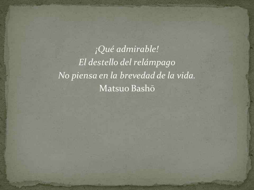 ¡Qué admirable! El destello del relámpago No piensa en la brevedad de la vida. Matsuo Bashō