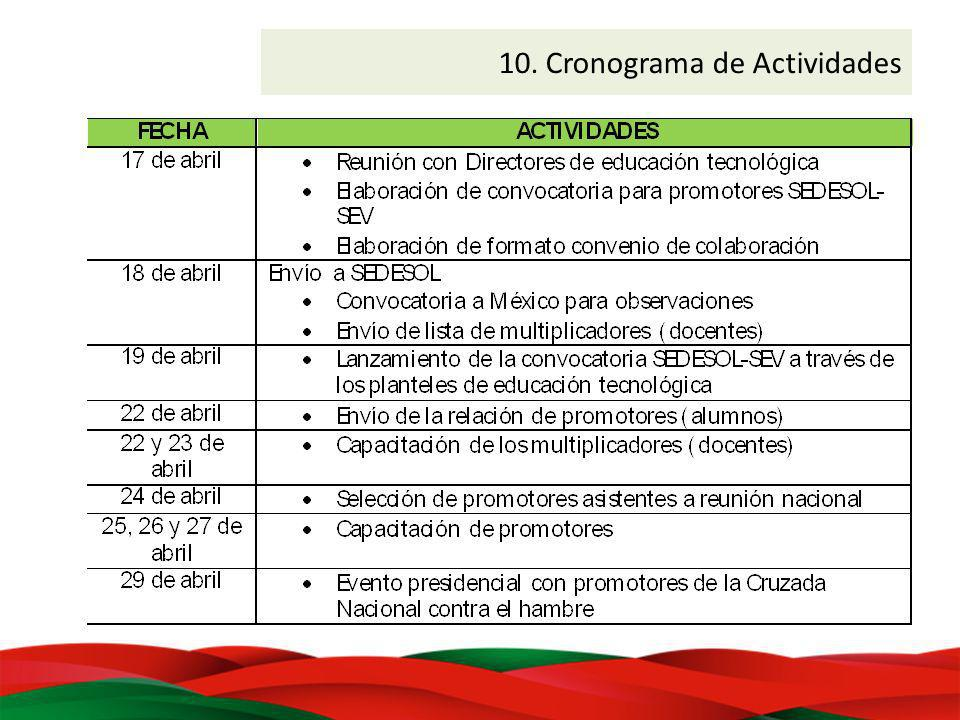 10. Cronograma de Actividades