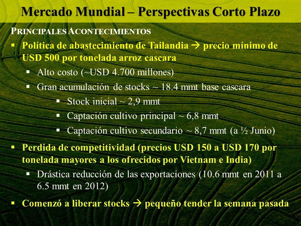P RINCIPALES A CONTECIMIENTOS Política de abastecimiento de Tailandia precio mínimo de USD 500 por tonelada arroz cascara Alto costo (~USD 4.700 millo
