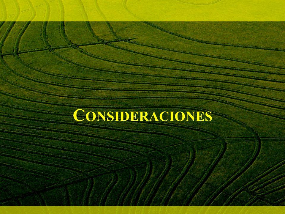 C ONSIDERACIONES