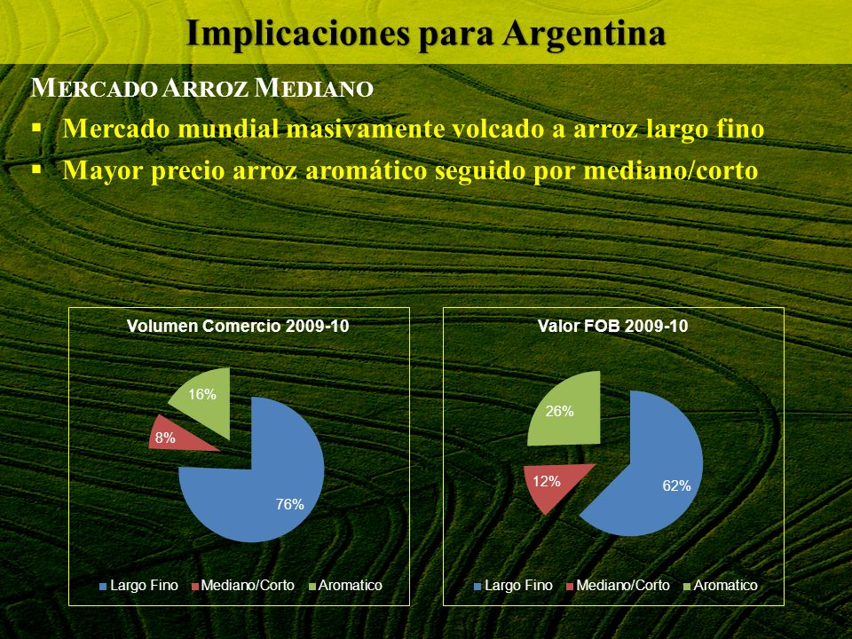 M ERCADO A RROZ M EDIANO Mercado mundial masivamente volcado a arroz largo fino Mayor precio arroz aromático seguido por mediano/corto Implicaciones p