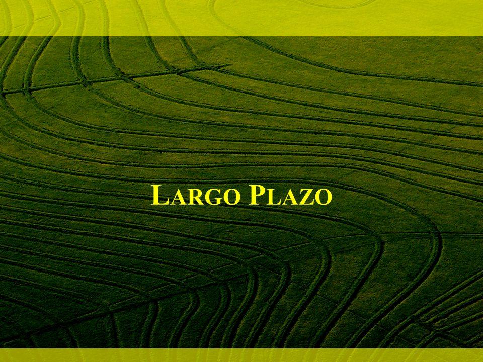 M ERCADO A RROZ M EDIANO Mercado mundial masivamente volcado a arroz largo fino Mayor precio arroz aromático seguido por mediano/corto Implicaciones para Argentina