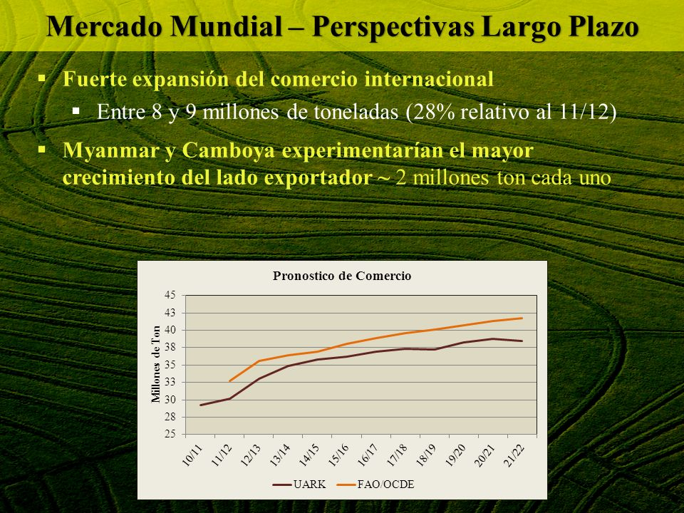 P RINCIPALES A CONTECIMIENTOS Perú: fuerte aumento de las importaciones (90.000 ton) 70% relativo al 2011 Mercado Mundial – Perspectivas Corto Plazo