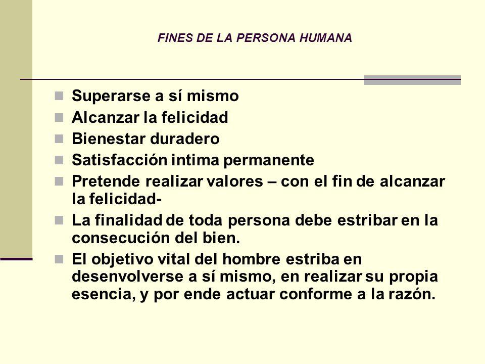PROPIEDADES DE LA PERSONA 1.