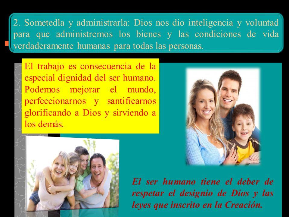 El trabajo es consecuencia de la especial dignidad del ser humano. Podemos mejorar el mundo, perfeccionarnos y santificarnos glorificando a Dios y sir