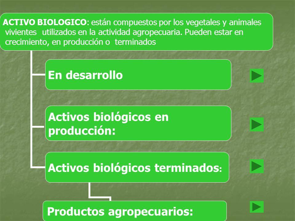 ACTIVO BIOLOGICO: están compuestos por los vegetales y animales vivientes utilizados en la actividad agropecuaria. Pueden estar en crecimiento, en pro