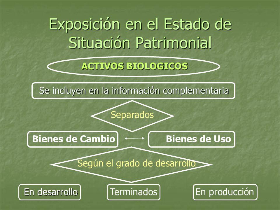 Exposición en el Estado de Situación Patrimonial ACTIVOS BIOLOGICOS Se incluyen en la información complementaria Separados Bienes de CambioBienes de U
