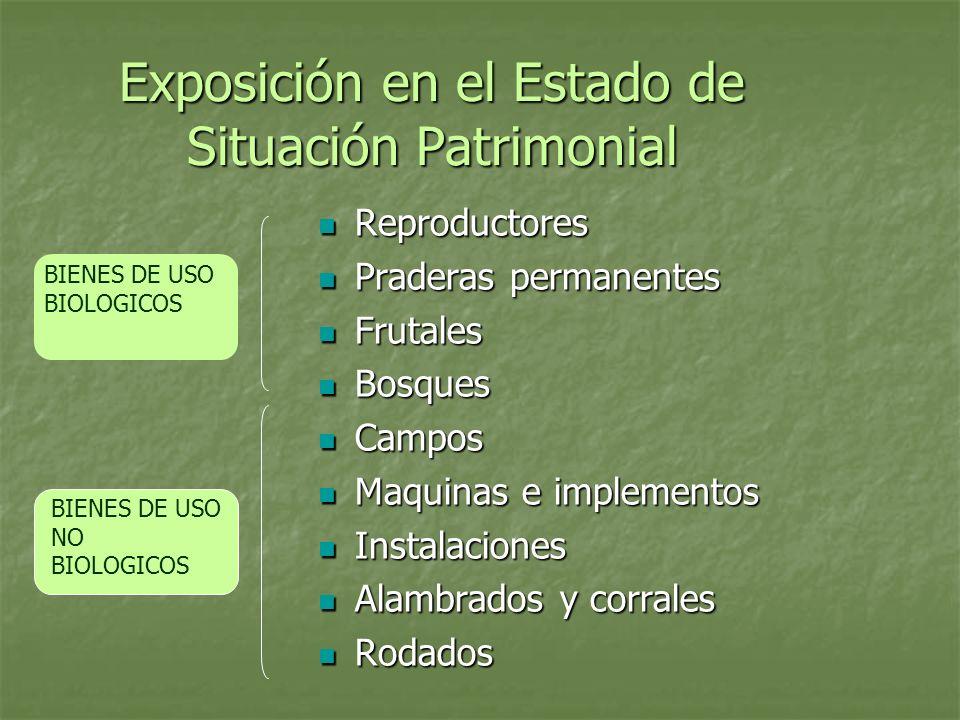 Exposición en el Estado de Situación Patrimonial Reproductores Reproductores Praderas permanentes Praderas permanentes Frutales Frutales Bosques Bosqu